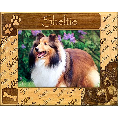 Buy Gwp Shetland Sheepdog Sheltie Engraved Alderwood Frame In 4 Sizes 0153 Online In Sri Lanka B01n445t94